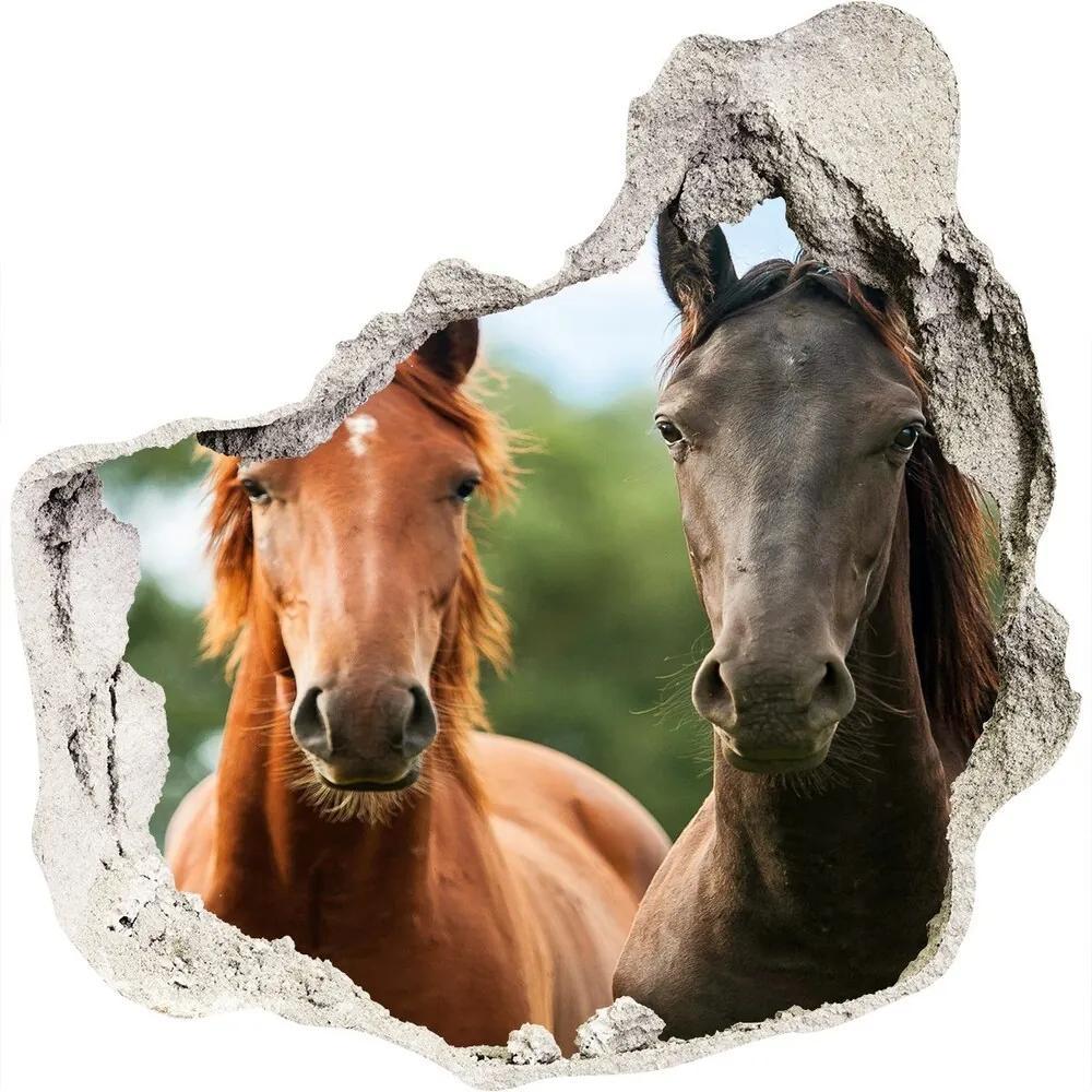Fototapet un zid spart cu priveliște Trei cai