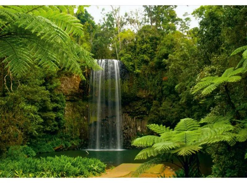 Fototapet cascada amazoniana