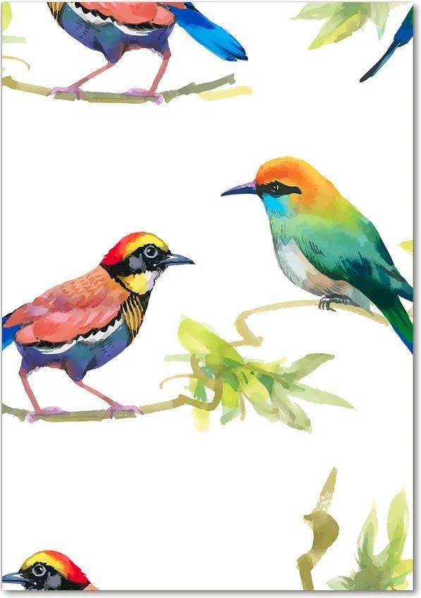 Tablou pe acril Păsări