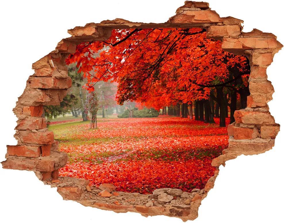 Autocolant gaură 3D Copaci în toamna