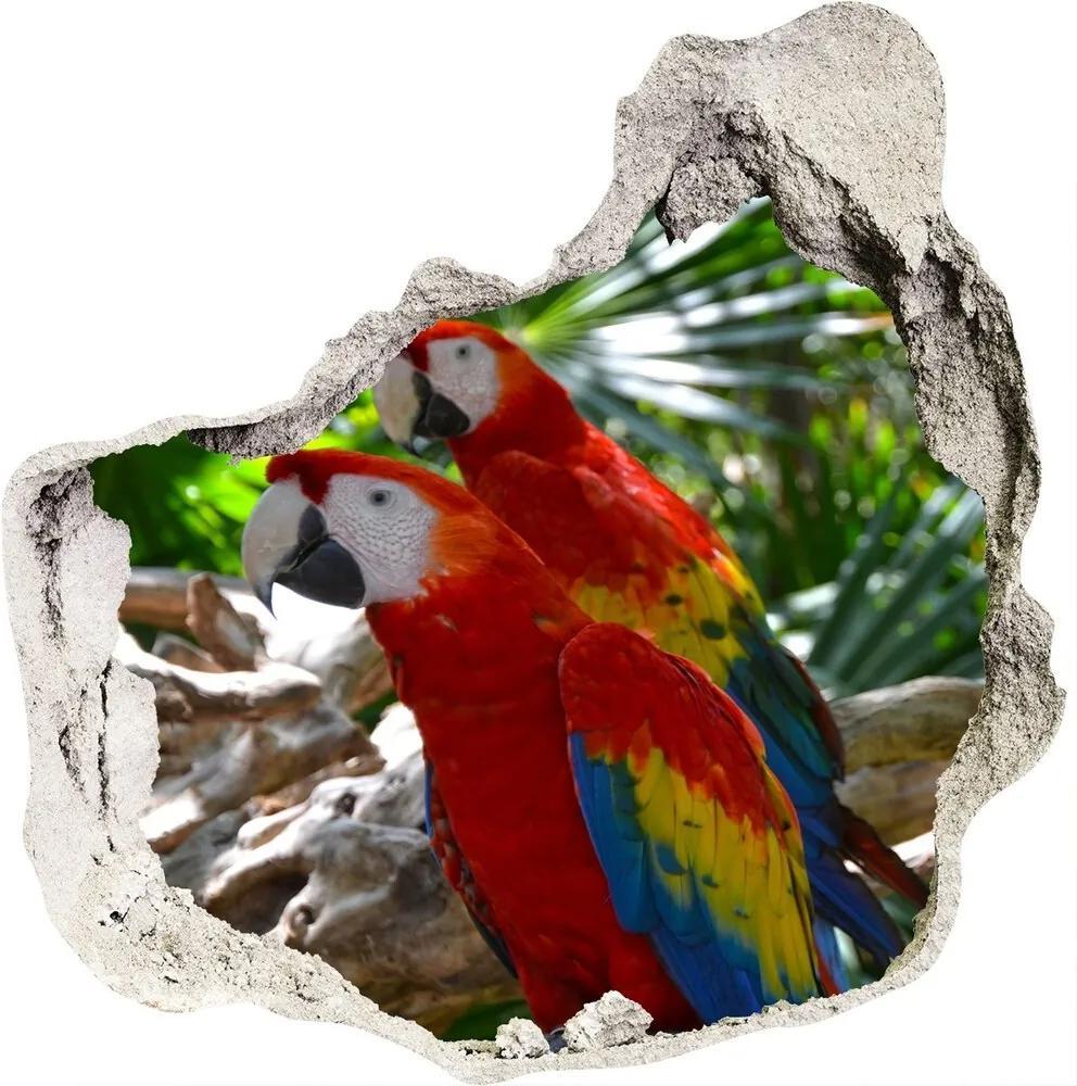 Fototapet un zid spart cu priveliște Papagali Macaws