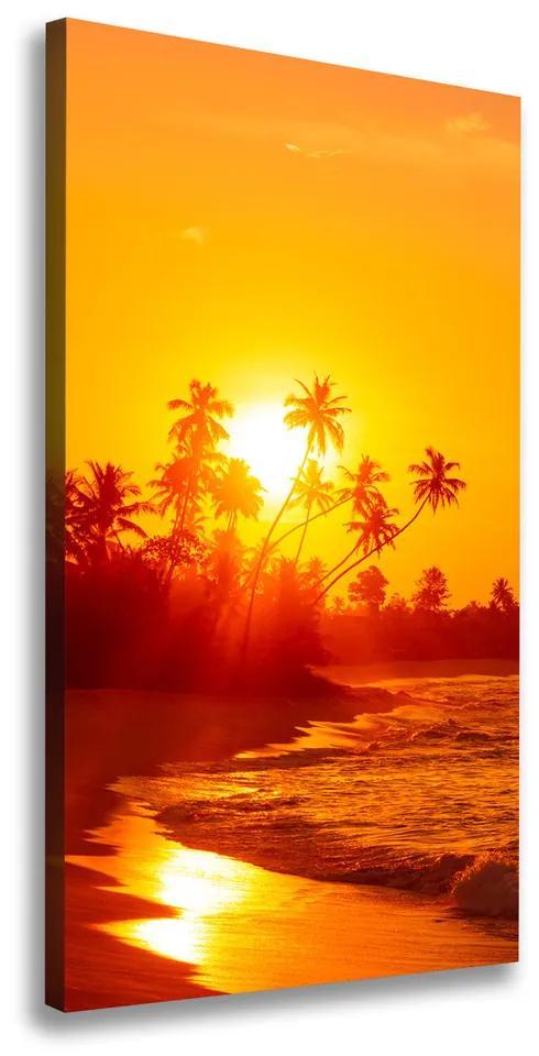 Tablouri tipărite pe pânză Plaja tropicala
