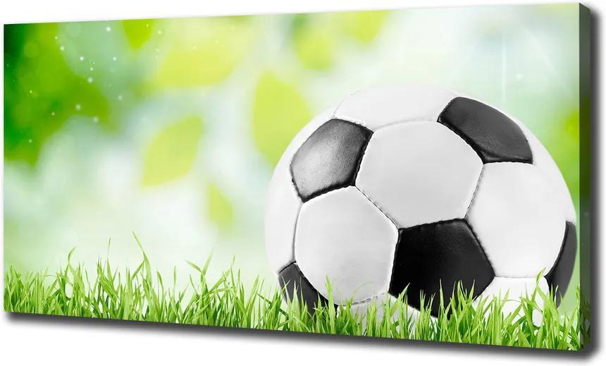 Print pe canvas Fotbal