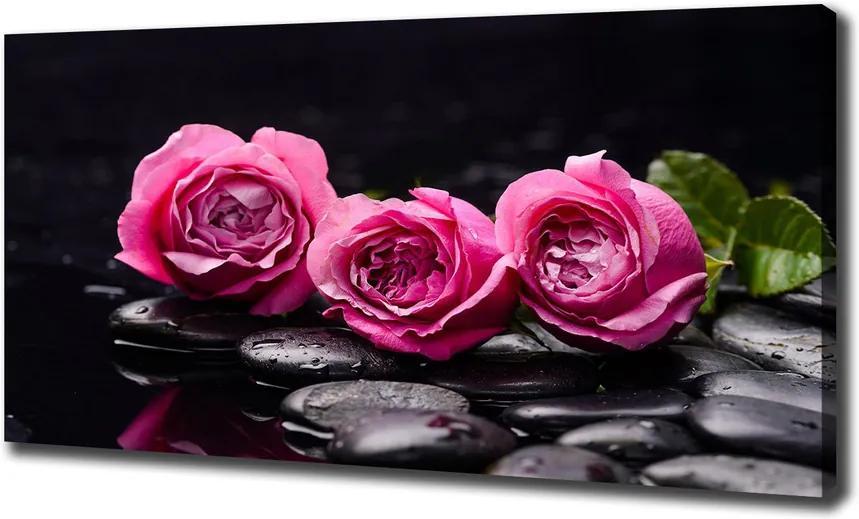 Tablou pe pânză canvas Trandafiri roz