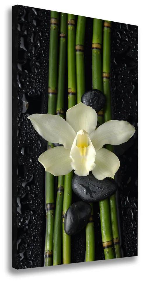 Tablou canvas Orhidee și bambus