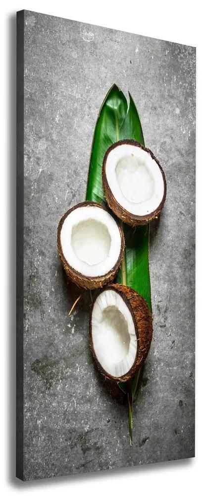 Imprimare tablou canvas Pe frunze de nucă de cocos