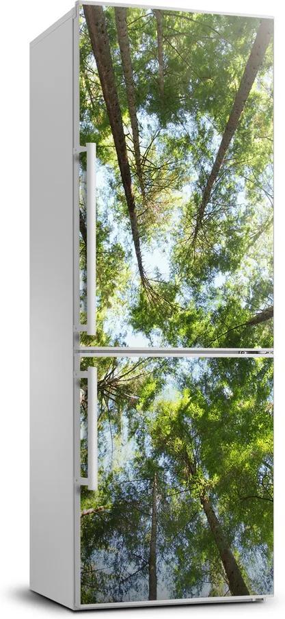 Autocolant pe frigider Ramuri superioare ale unui copac