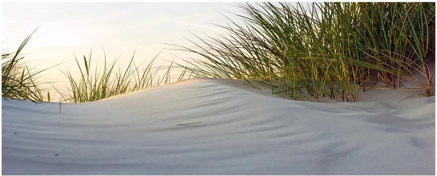 Tablou acrilic Dune de coastă