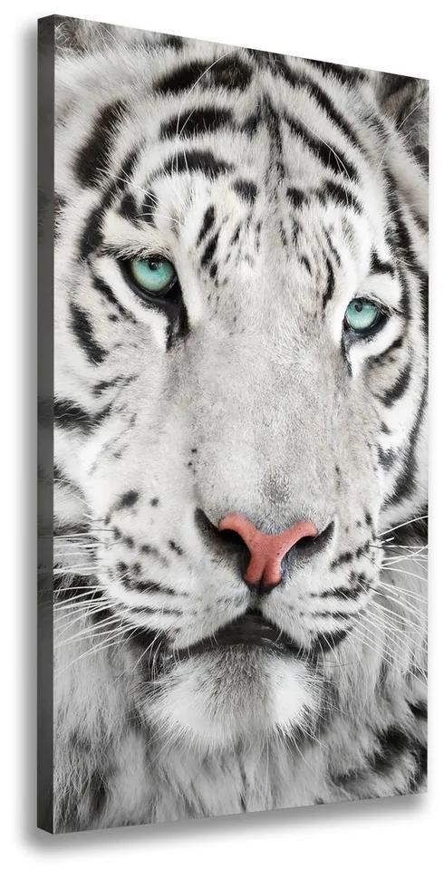 Tablouri tipărite pe pânză Tigru alb