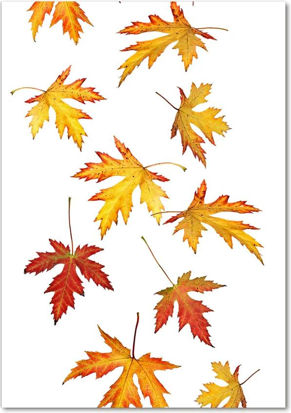 Pictura pe sticlă acrilică Frunze de toamna