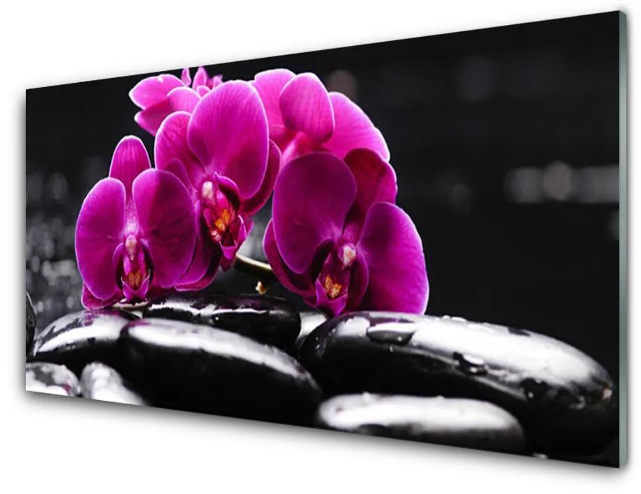 Tablou pe sticla acrilica Pietrele florale flori Roșu Negru