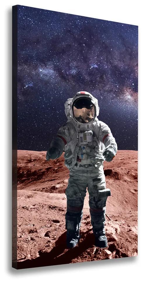 Tablou pe pânză canvas Astronaut