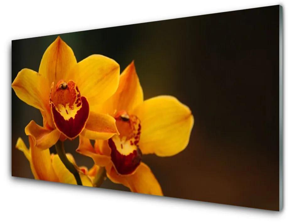 Tablou pe sticla Flori Floral Galben