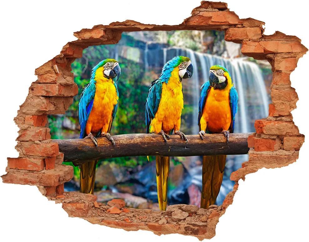 Autocolant 3D gaura cu priveliște Papagalii pe o ramură