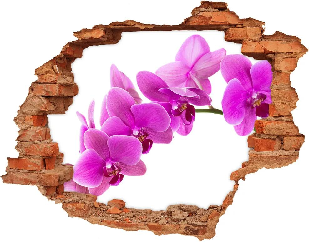 Autocolant autoadeziv gaură Orhidee roz