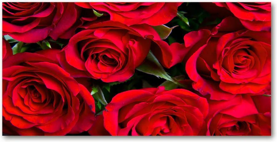 Tablou Printat Pe Sticlă Trandafiri rosii