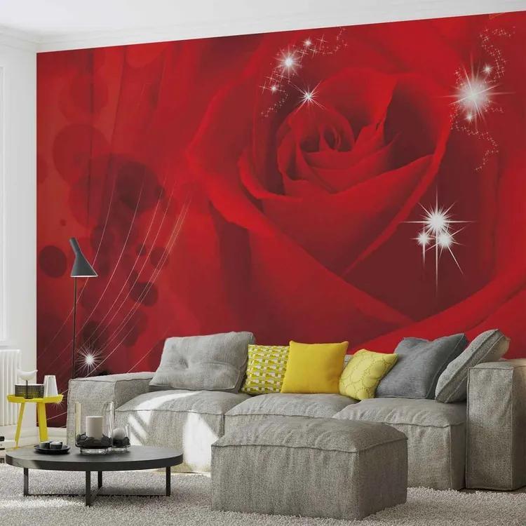 Flower Rose Red Fototapet, (250 x 104 cm)