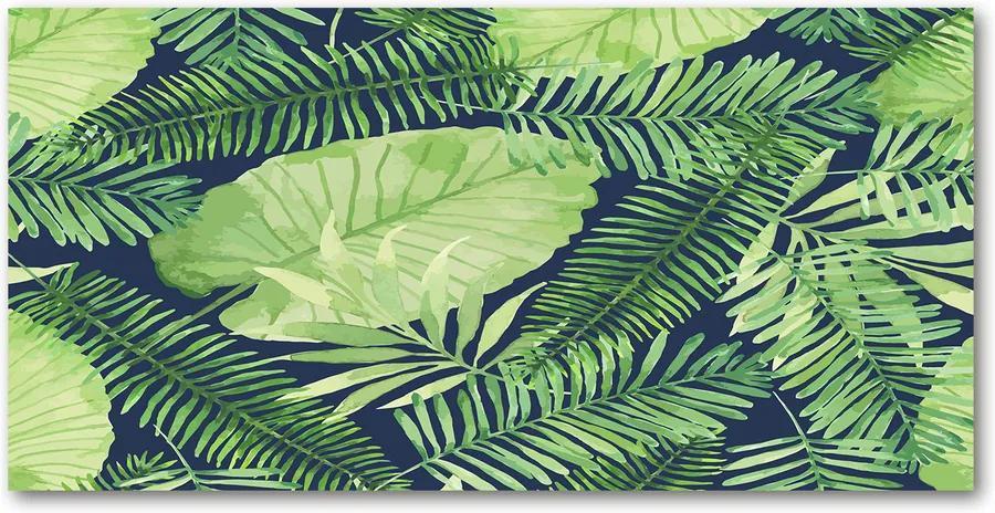 Tablou pe sticlă acrilică Frunze tropicale