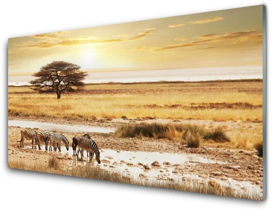 Tablou pe sticla acrilica Desert Peisaj Galben