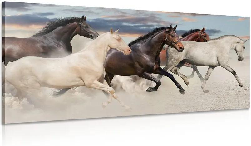 Tablou turmă de cai