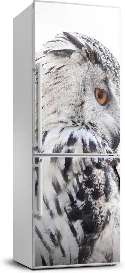 Foto Autocolant pentru piele al frigiderului Bufniță albă