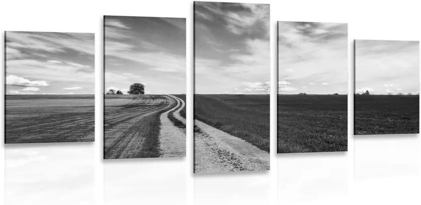 Tablou 5-piese peisajul încăntător în design alb-negru