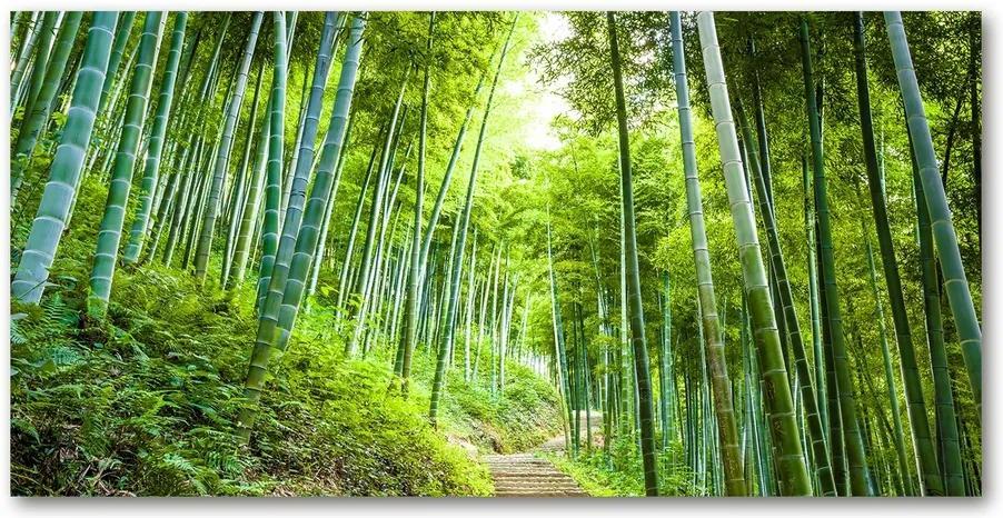 Tablou pe pe sticlă Pădure de bambus