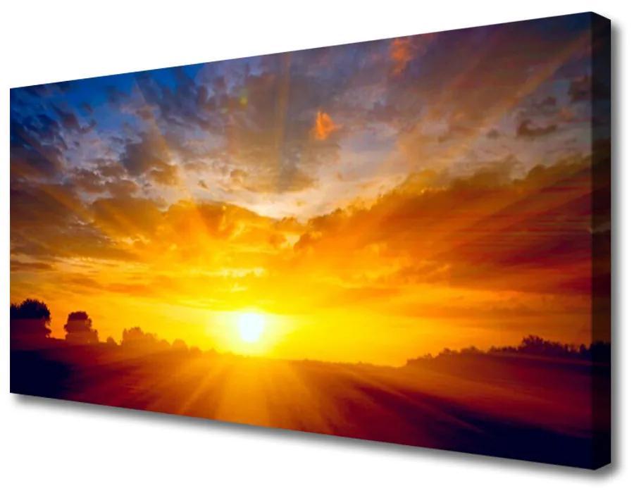 Tablou pe panza canvas Sun Peisaj Galben