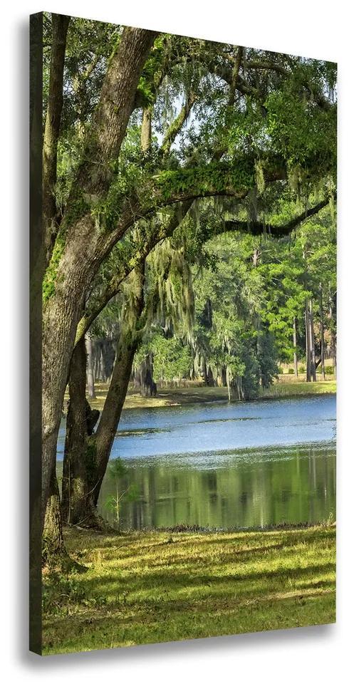 Imprimare tablou canvas Lacul în parc