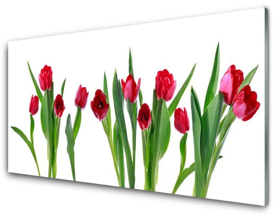 Tablou pe sticla acrilica Lalele Floral Red