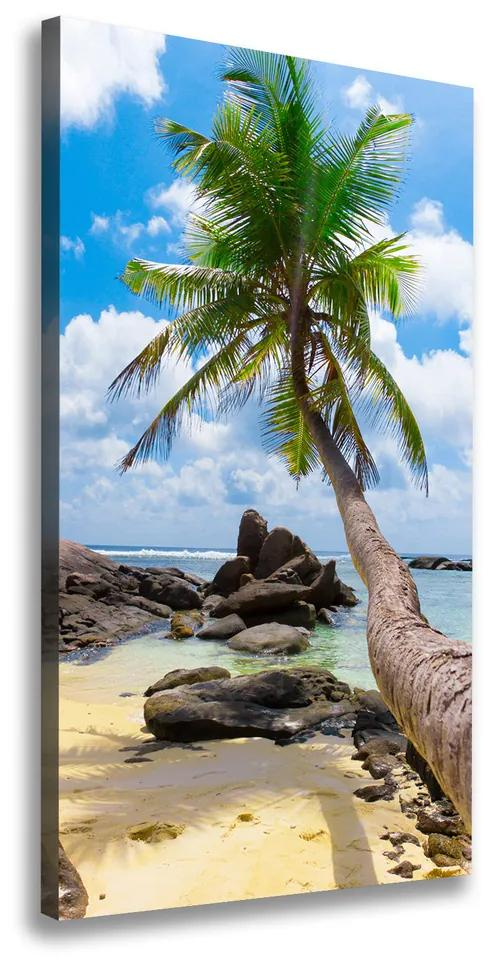 Imprimare tablou canvas Plaja tropicala