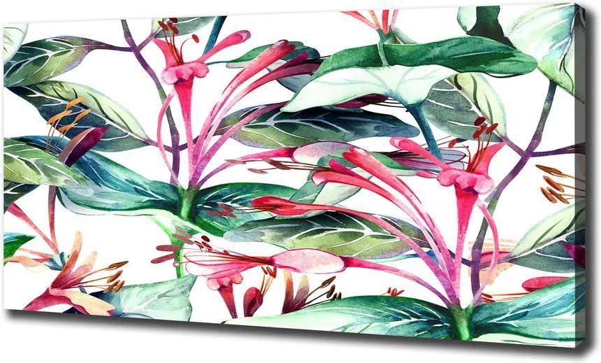 Tablou pe pânză canvas Caprifoi
