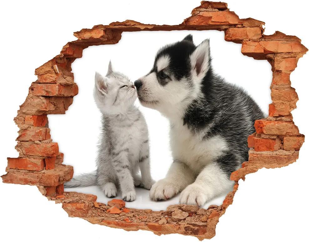 Autocolant gaură 3D Câine și pisică