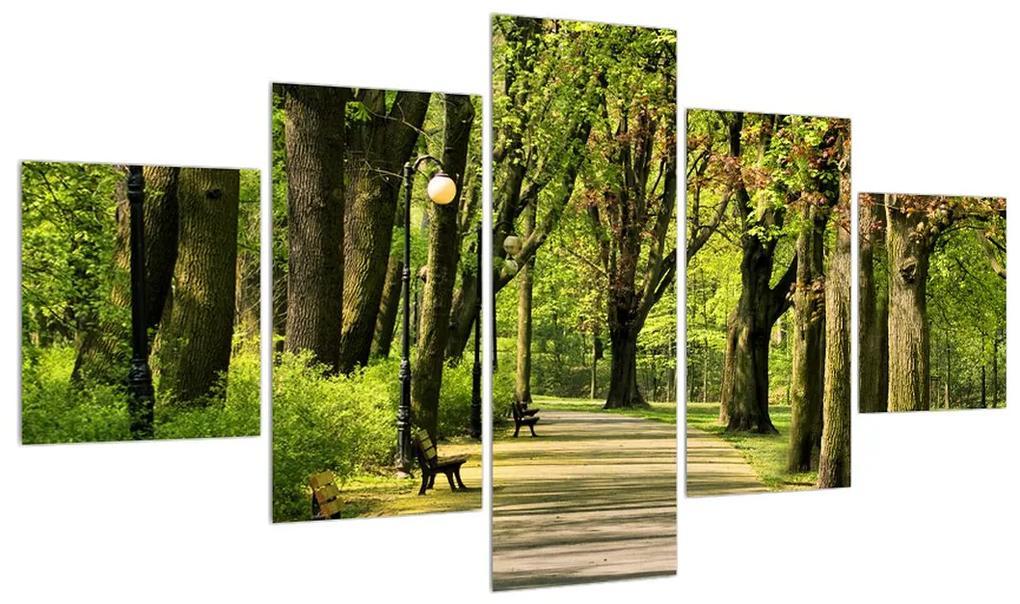 Tablou cu alee în parc (K010232K12570)