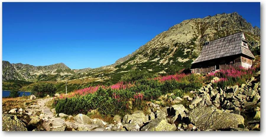 Imagine de sticlă Bacówka în vale