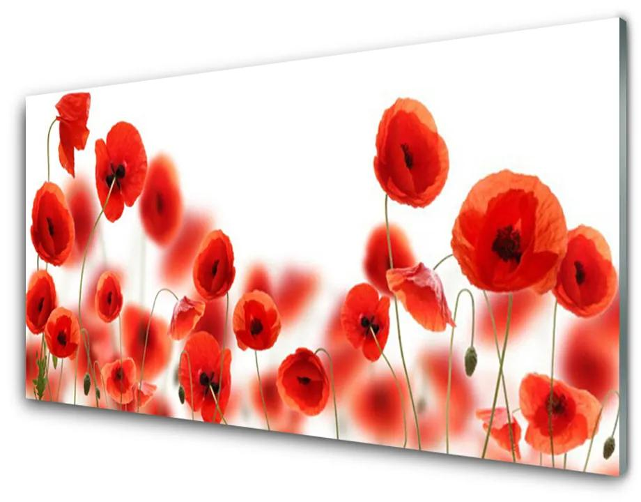 Tablou pe sticla acrilica Maci Floral Roșu Verde