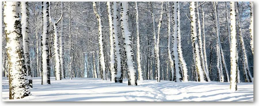 Tablou sticlă acrilică Pădure în timpul iernii