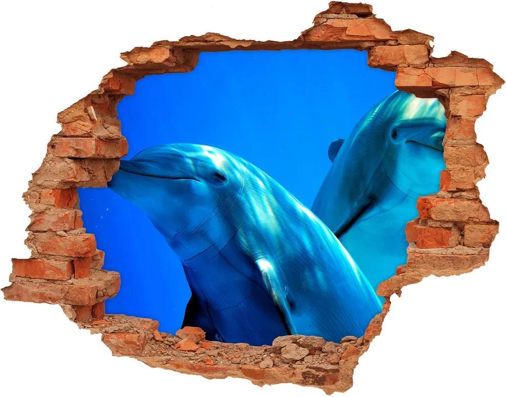 Autocolant un zid spart cu priveliște Doi delfini