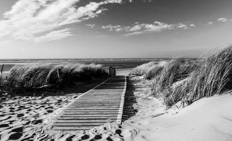Beach Scene Fototapet, (312 x 219 cm)