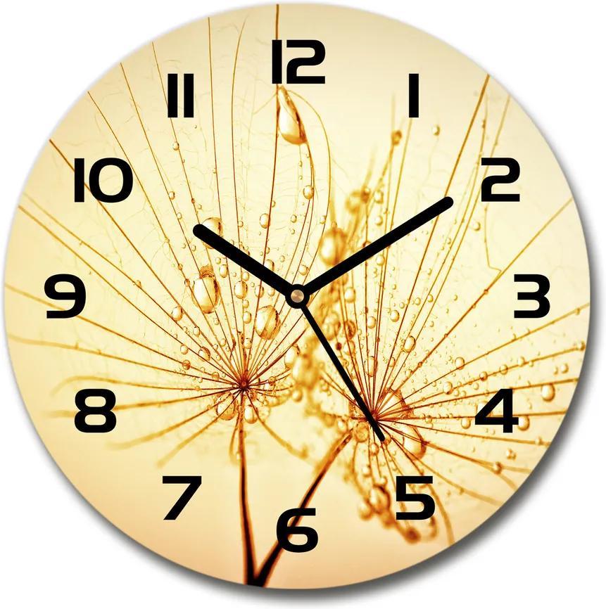 Ceas din sticlă rotund Semințe de papadie