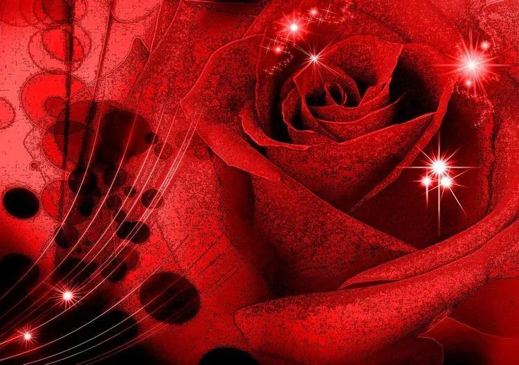 Flower Rose Abstract Fototapet, (104 x 70.5 cm)
