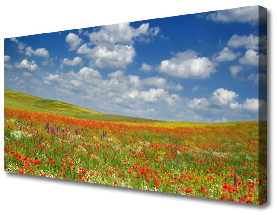 Tablou pe panza canvas Meadow Flori Peisaj Roșu Alb Verde