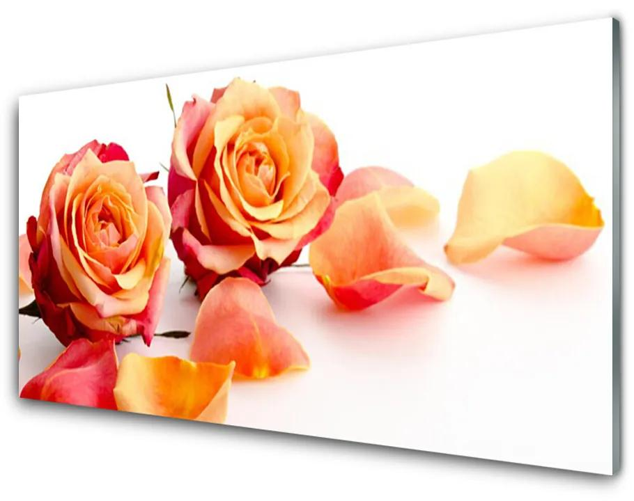 Tablou pe sticla acrilica Trandafiri Floral Galben Portocaliu
