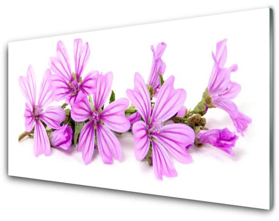 Tablou pe sticla acrilica Flori roz Floral