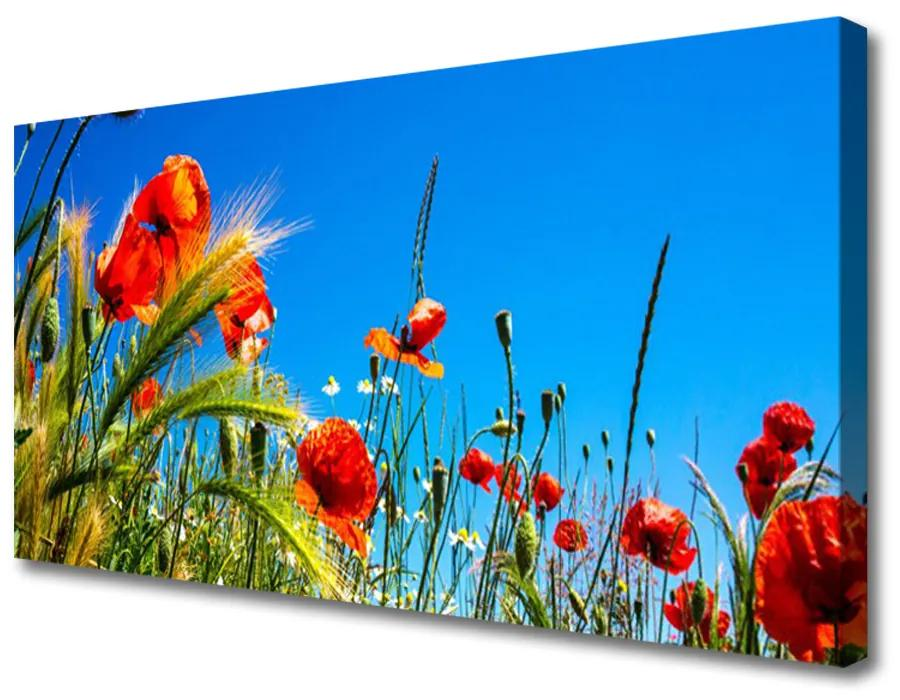 Tablou pe panza canvas Flori Floral Roșu Verde