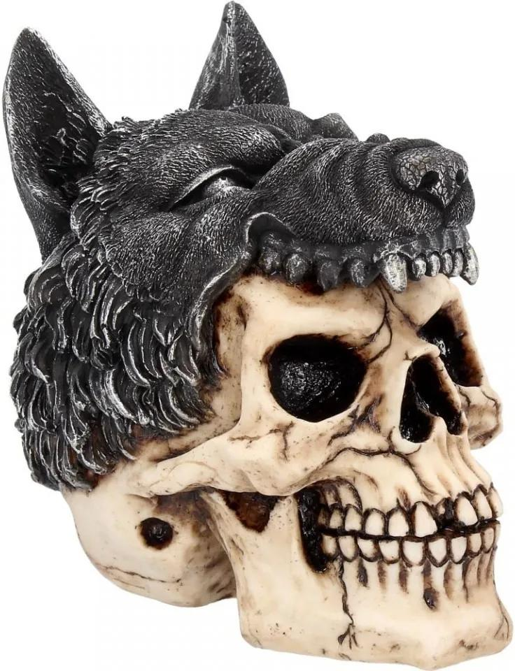Statueta craniu Samanul 14 cm