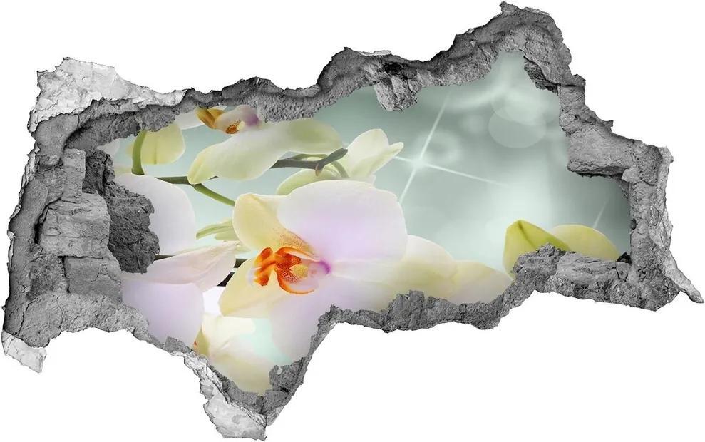Autocolant autoadeziv gaură Alb orhidee