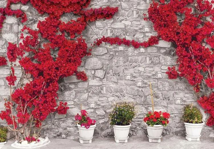 Red Flowers Stone Wall Fototapet, (152.5 x 104 cm)