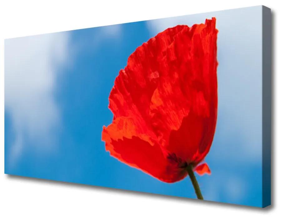 Tablou pe panza canvas Tulip Floral Roșu Albastru