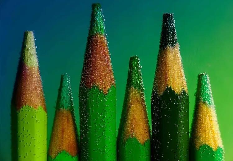 Green Fototapet, (416 x 290 cm)